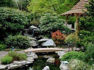 японський сад фото