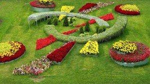 квітники в ландшафтному дизайні фото