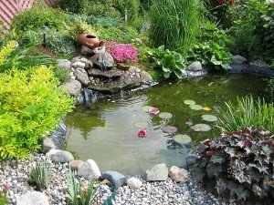 камяний сад
